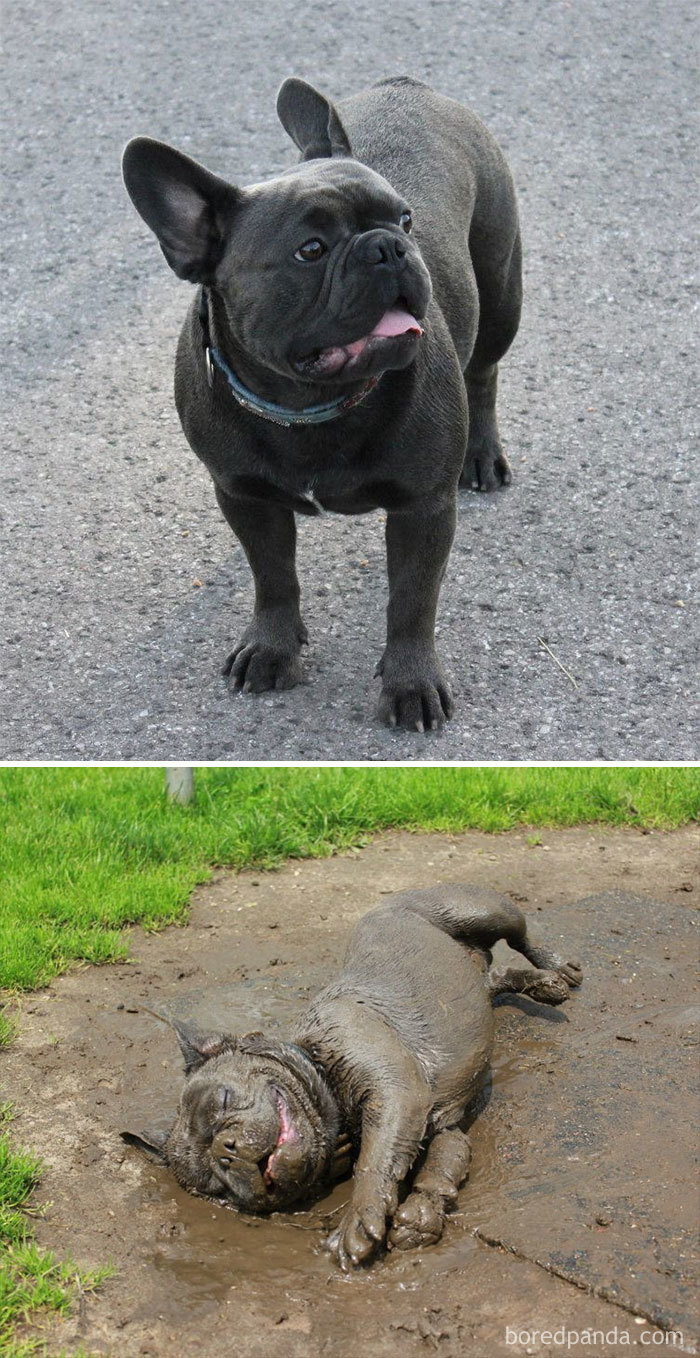 Before And After Mud Bath
