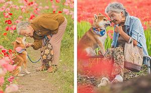 Este fotógrafo capta el conmovedor vínculo entre su abuela y su shiba inu en 30 preciosas fotos