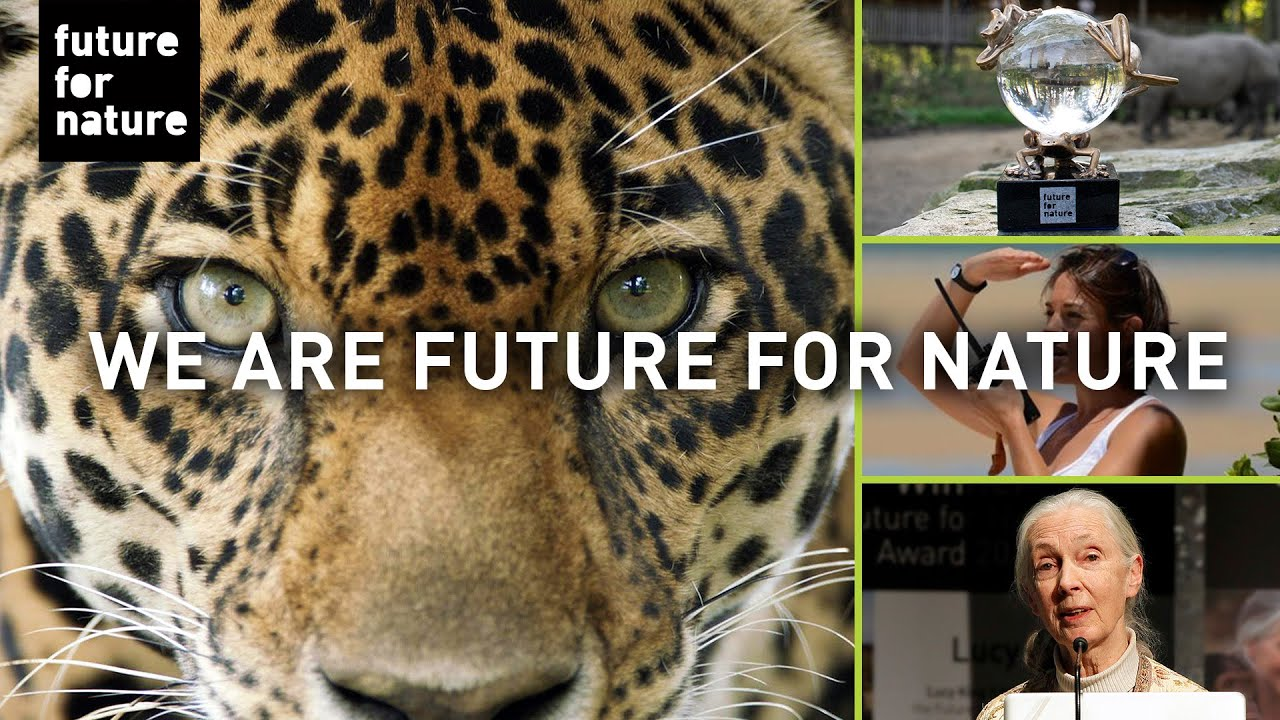 Young Individuals Change The Future Of Nature