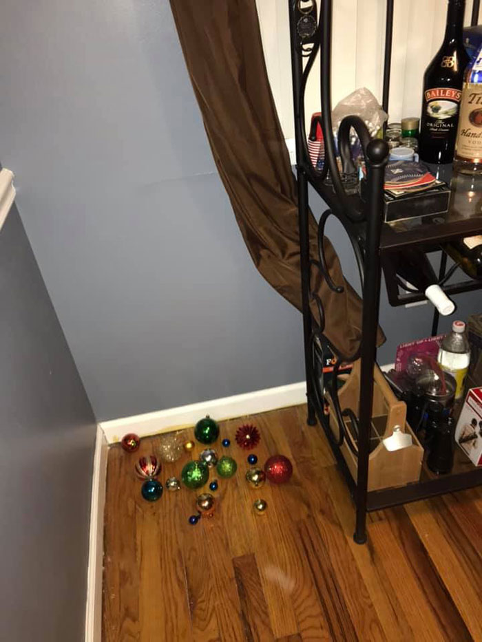Man Puts Up 'Home Alone' Inspired Traps As Christmas Decorations