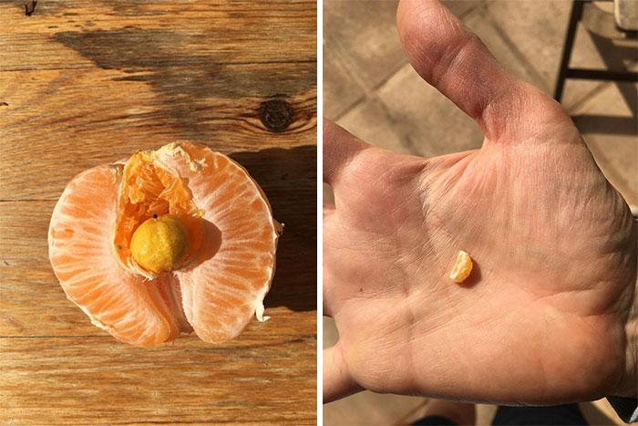Naranja con otra mininaranja creciendo dentro