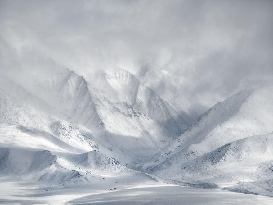 The Wildlife In Landscape Award: West Mongolia By Ricardo Da Cunha