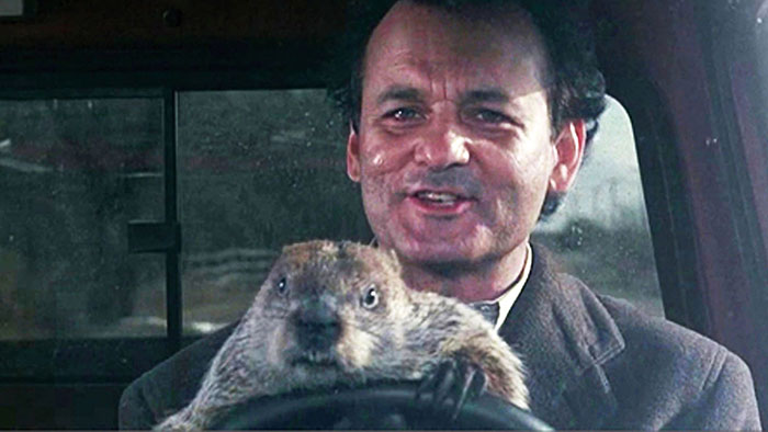 Bill Murray Finally Learns To Love Groundhog Day In This ...