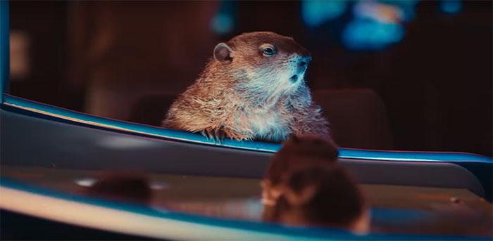 Bill Murray aprende al fin a disfrutar del Día de la Marmota en este divertido anuncio de Jeep en la Superbowl