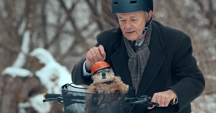 Image result for bill murray groundhog day""