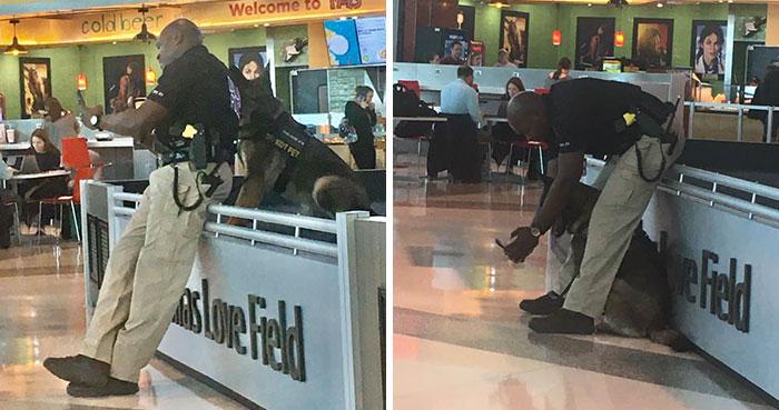 Esta mujer comparte cuando vio a un policía haciéndose selfies con su perro de servicio, y él responde mostrando las fotos