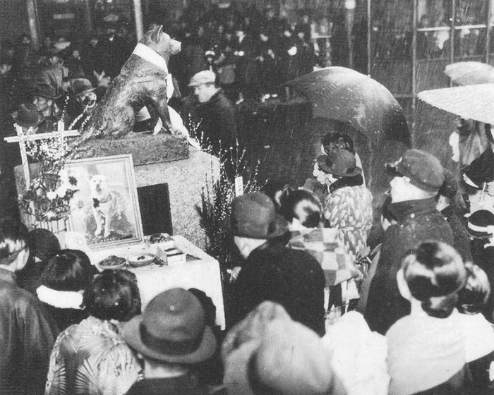 Rare Photos Of Hachiko Patiently Waiting For His Owner Have Surfaced And It's Heartbreaking To See