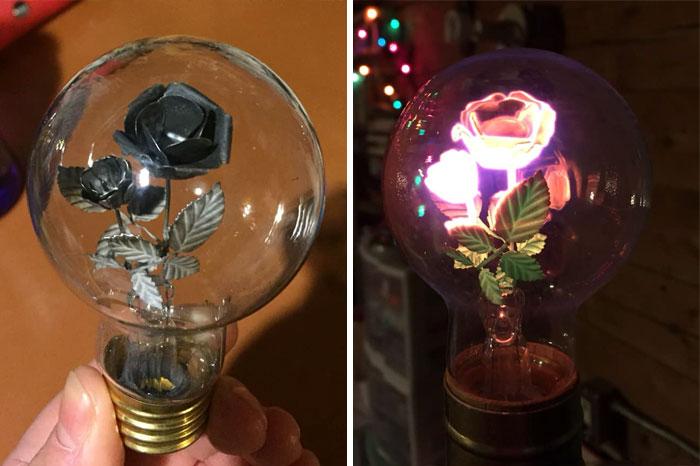 Got This Unusual Lightbulb As Bonus To A $5 Lamp At Value Village In Fairbanks