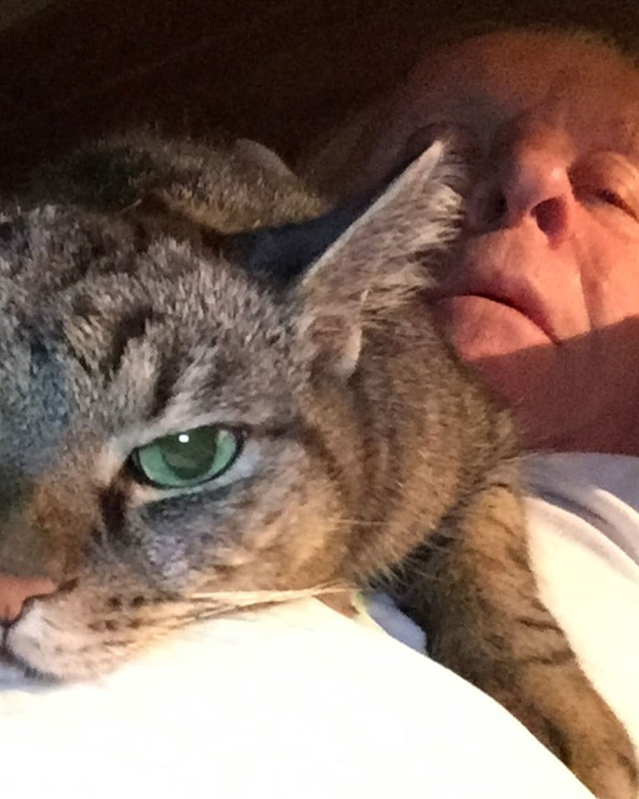 Anthony Hopkins Plays The Piano For His Cat Niblo During Self-isolation And He Looks Absolutely Ecstatic