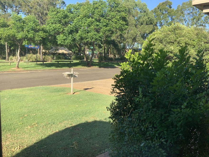 Brisbane, Australia. Park And Street Has Never Been Quieter.