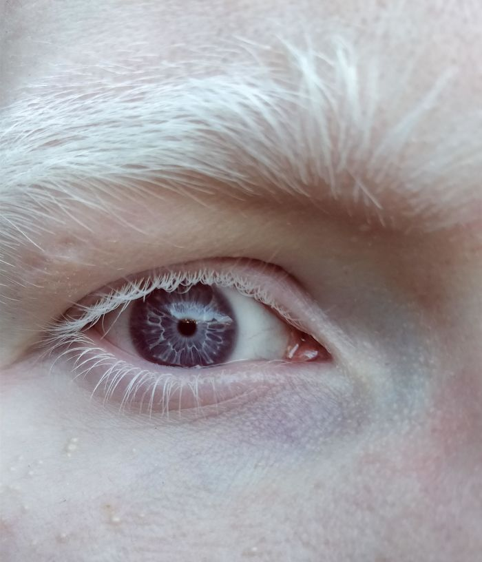 I Think You'll Like My Eye