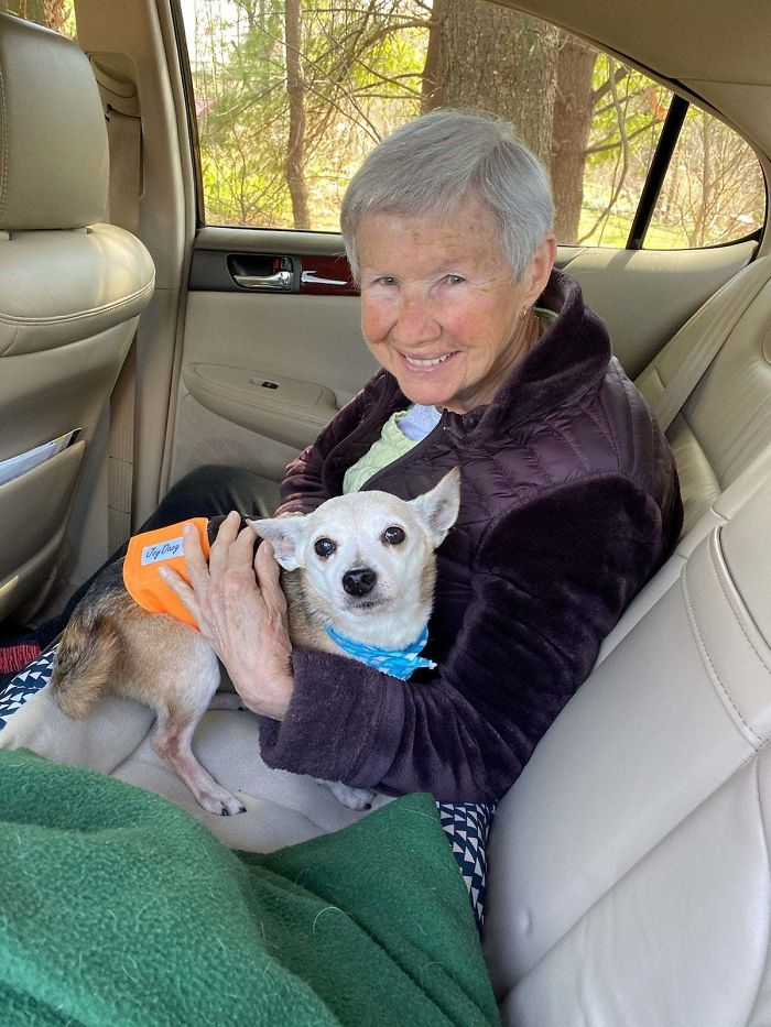 My Grandmother (87) With Her Newly Adopted Senior Peanut (14) On Their Way Home From Foster Care Today
