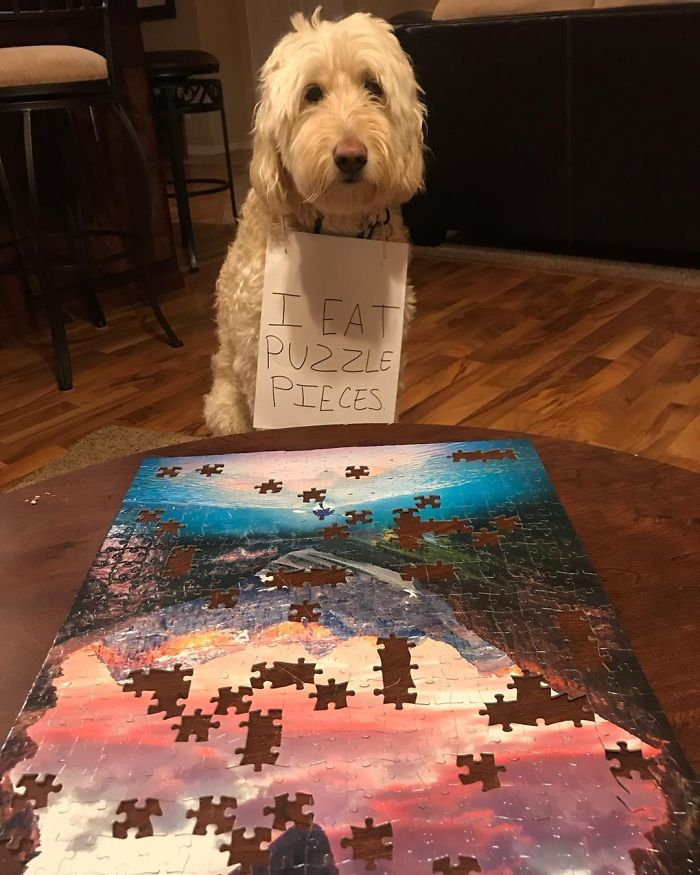 Apparently Puzzles Are A Delicious
