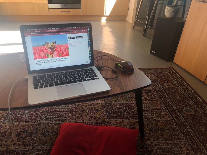 Here's My Setup, I Love Sitting On A Pillow While Working