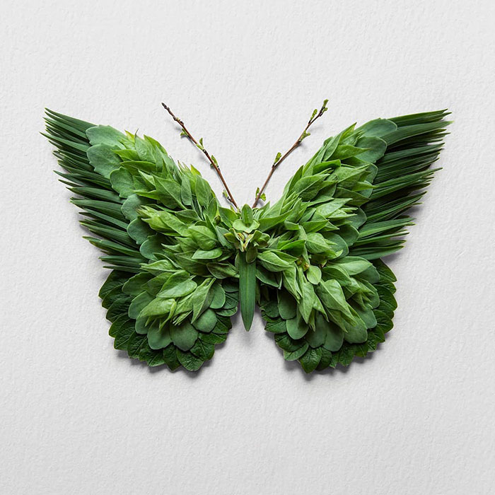 30 Delicate Animal Portraits Created From Things Found In Nature By Raku Inoue