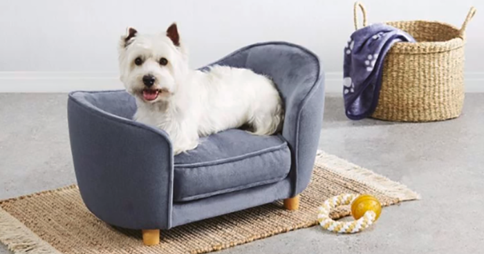 Aldi Released A Line Of Adorable Tiny Sofas For Dogs