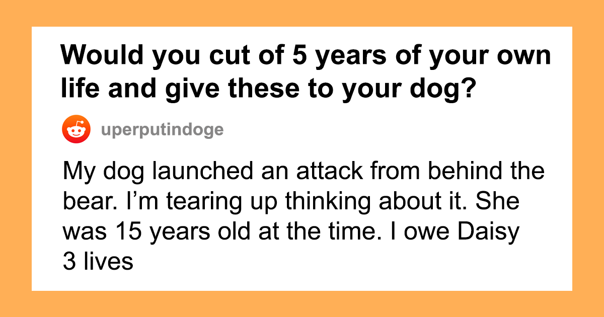 Someone Asks Whether Dog Owners Would Give 5 Years Of Their Life To Their Dog, And This Reply Goes Viral
