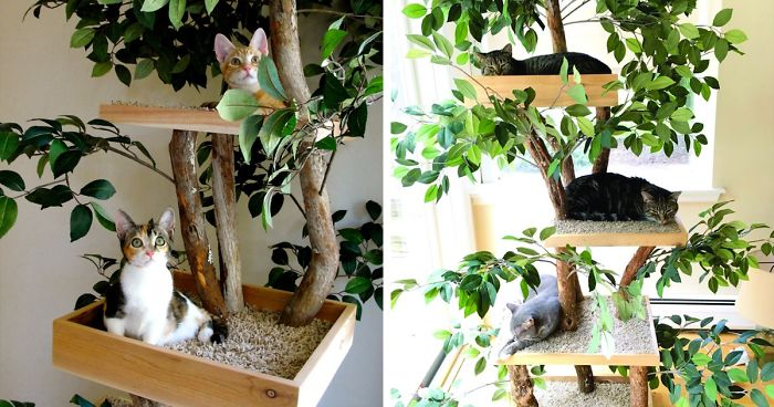 Indoor Cat Towers That Look Like Real Trees Are A Thing And They're Absolutely Beautiful
