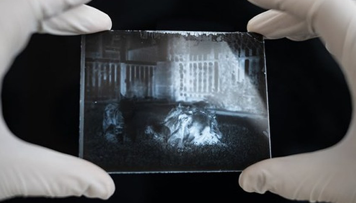 Man Opens A 120 Y.O. Time Capsule To Find Undeveloped Cat Pics, Decides To Develop Them