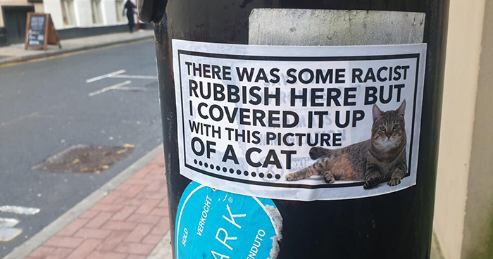 Someone In Manchester Keeps Covering Up Racist Graffiti With Cat Stickers