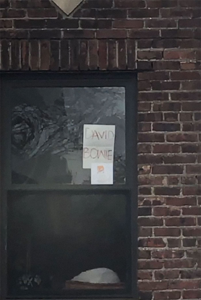 Woman Asks A Neighbor What His Cat's Name Is Via A Sign On Her Window, Receives An Answer And Cute Pics