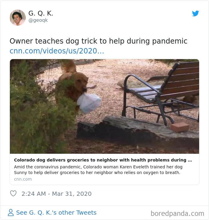 Coronavirus-Wholesome-Quarantine-Good-News