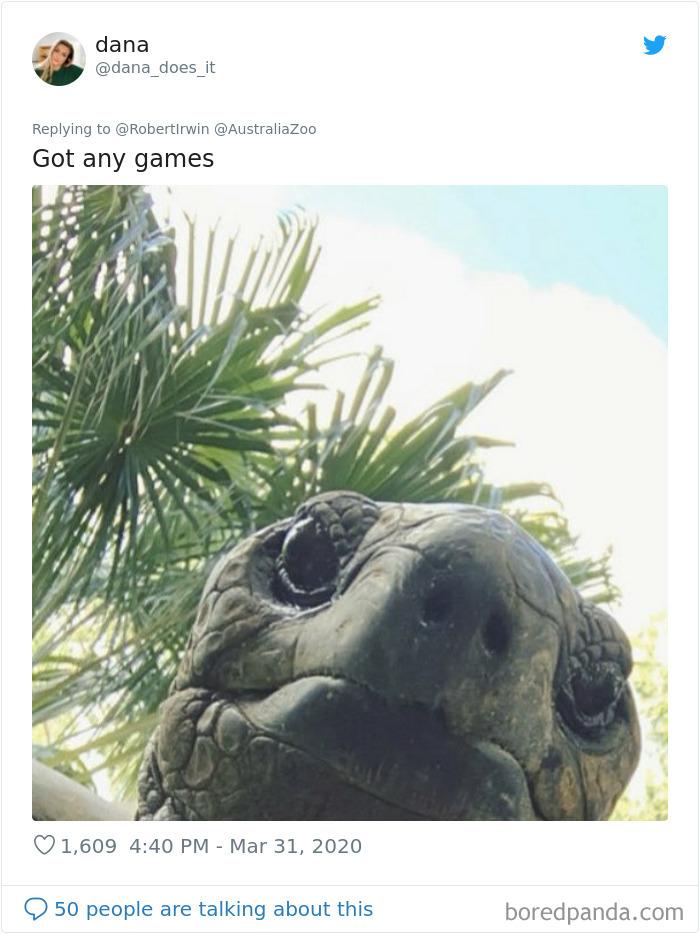 Robert Irwin Shares Photo Of His Self-Isolation Buddy, A Tortoise Named Igloo