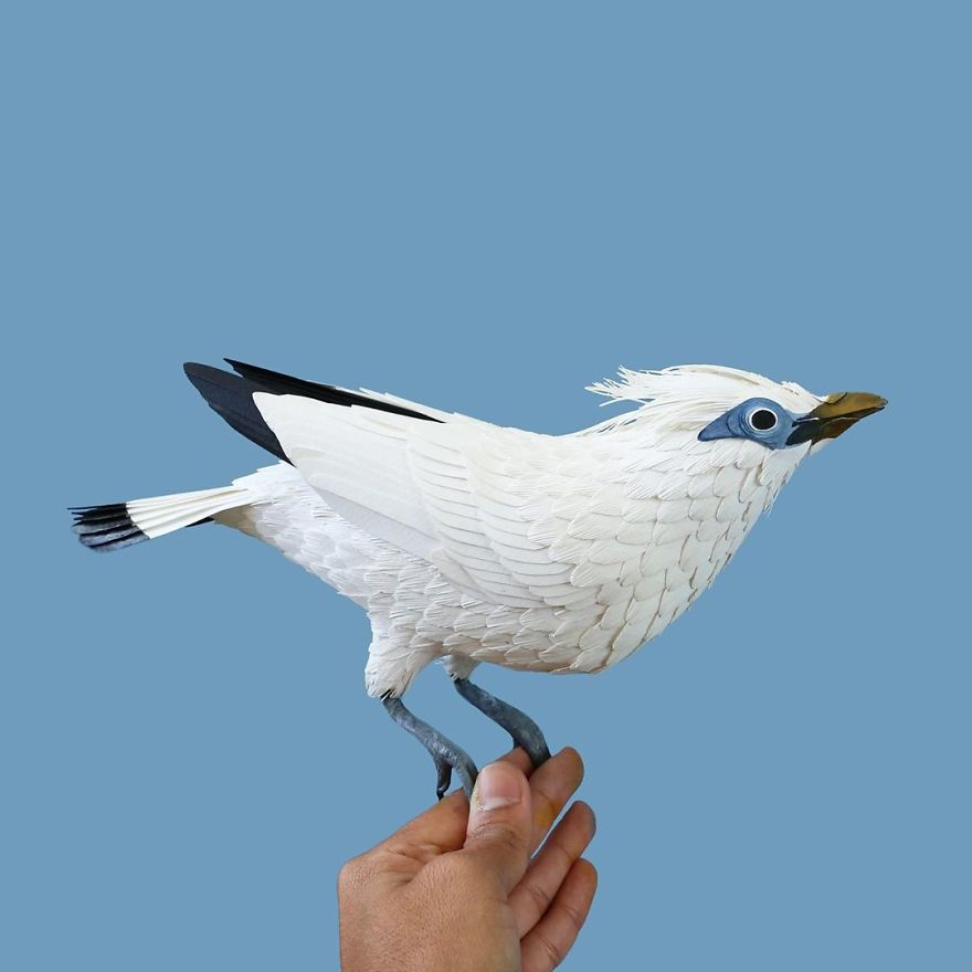 Colombian Artist Makes Unbelievable Paper Birds