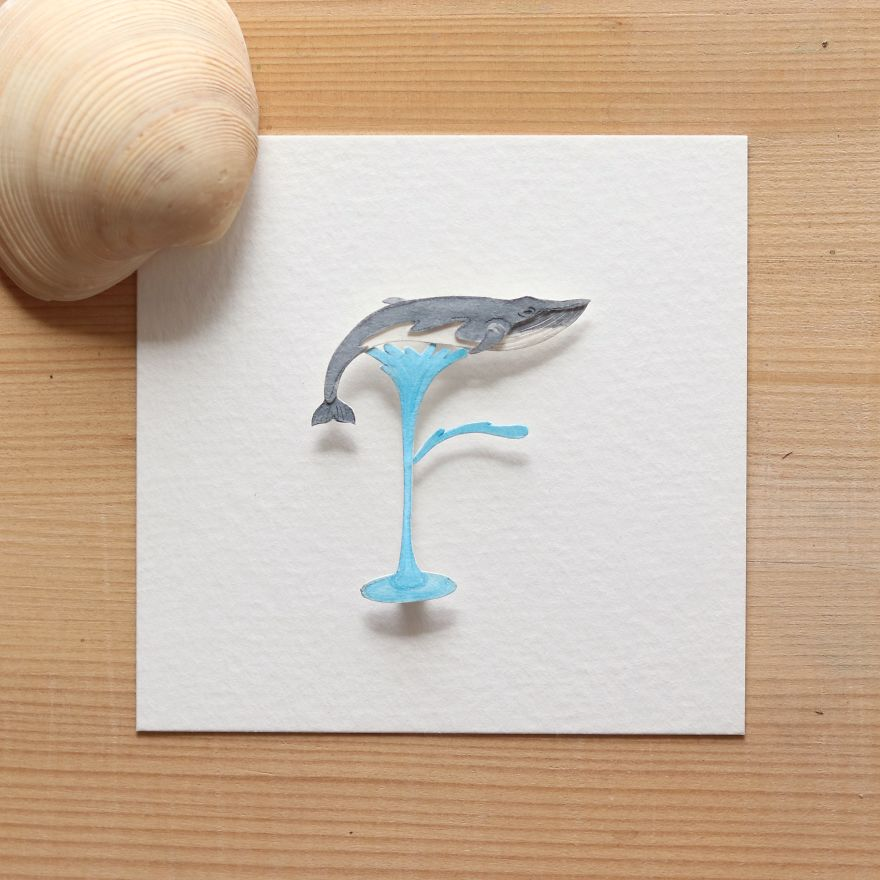 We Made An Alphabet Out Of Endangered Wildlife Species (34 Pics)