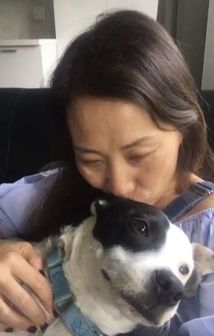 Woman With A Fear Of Dogs Decides To Adopt A Dog Who Is Afraid Of People And They Develop A Heartwarming Friendship
