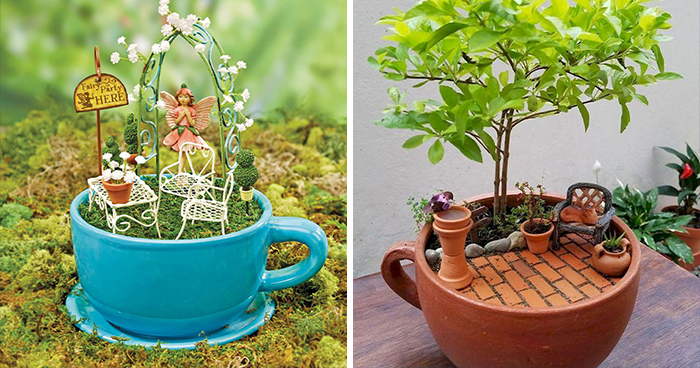 Apparently, Teacup Gardens Are A Thing And Here Are 23 Adorable Examples