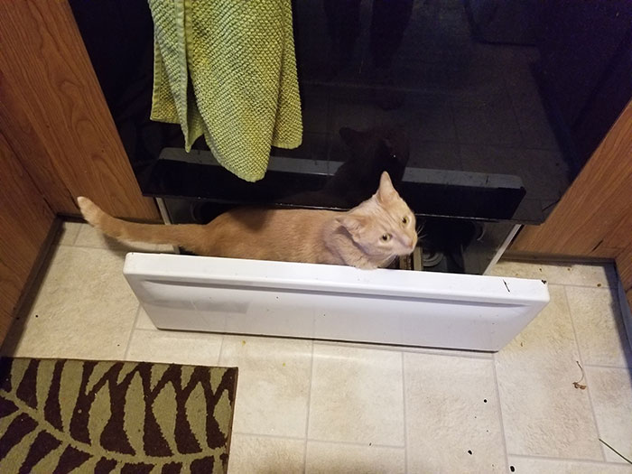 Under The Stove