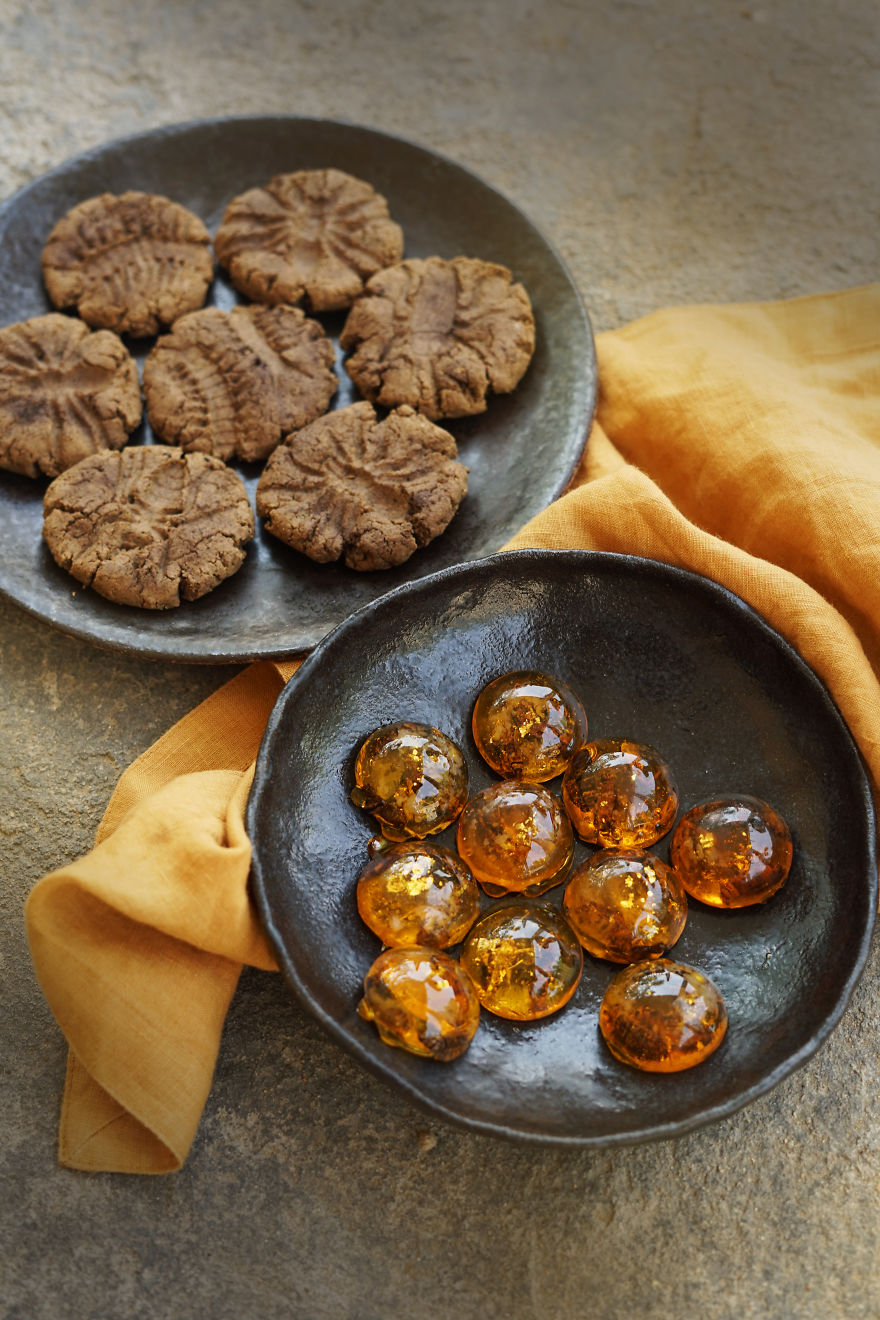 Fossil Cookies And Amber Candies