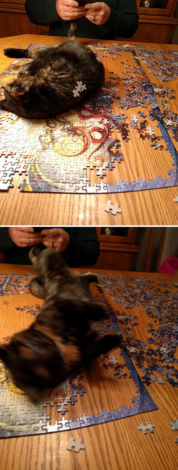 Puzzle Blocked