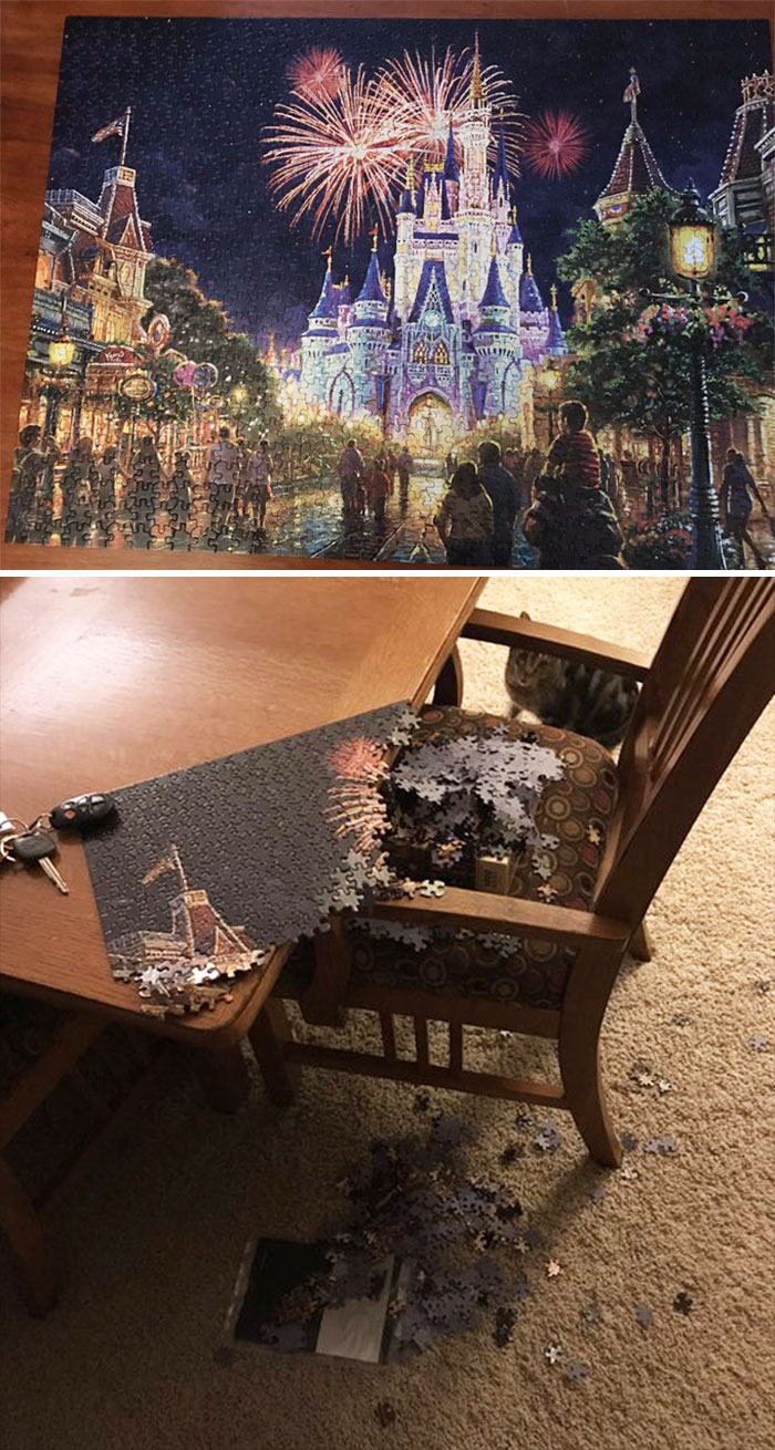 I'm Not Good At Puzzles, But I Got Obsessed With This Beautiful Puzzle Over The Break. This Morning, I Woke Up To My Cats' Destruction