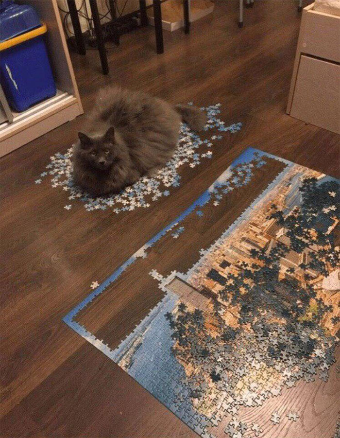 """""""So Try And Finish Your Puzzle Now Peasant"""""""