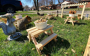Man Uses Quarantine Time Creatively And Builds A Tiny Restaurant For Animals In His Yard