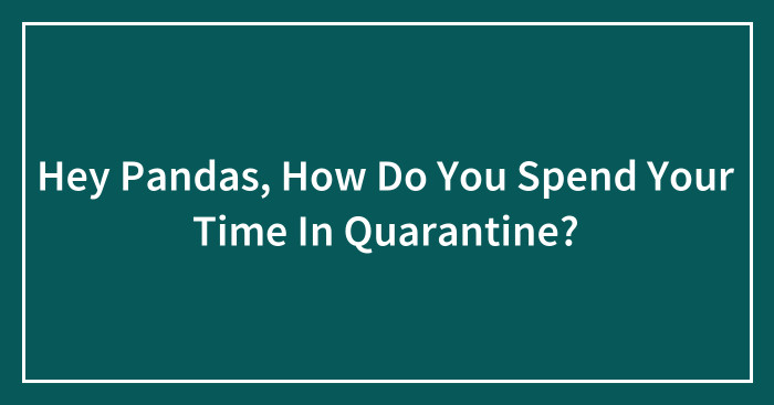 Hey Pandas, How Do You Spend Your Time In Quarantine? (Ended)