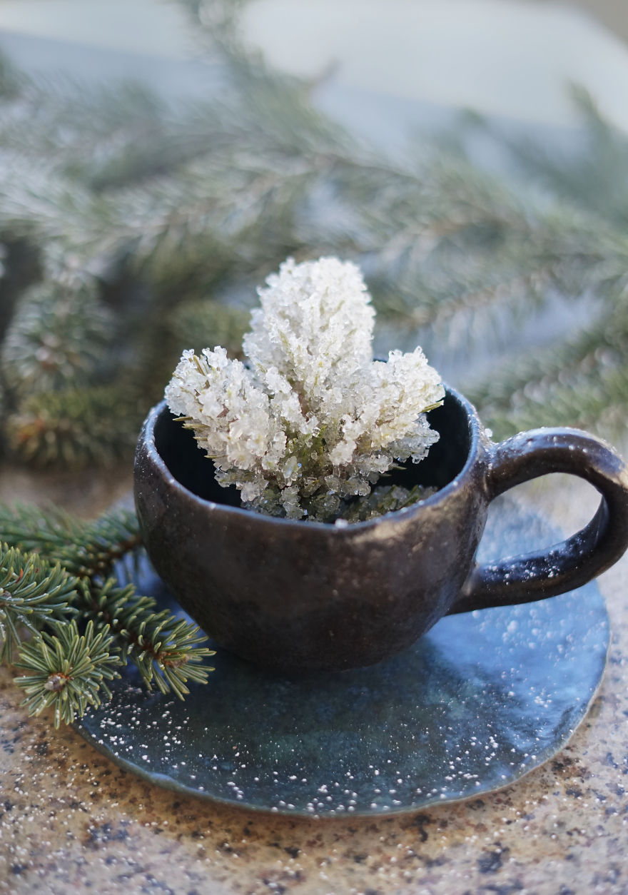 Frosted Branch Tea