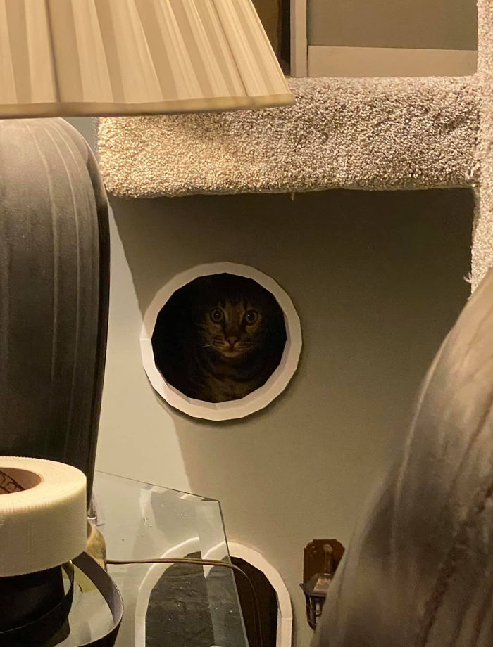 Man Builds Two Kitty Towers For His Cats And So Many People Want It, He's Gonna Start Selling The Building Plans