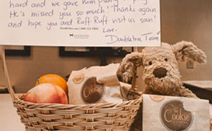 Little Girl Loses Her Teddy Bear At A Hotel, Employees Find Him And 'Hire' Him For The Day