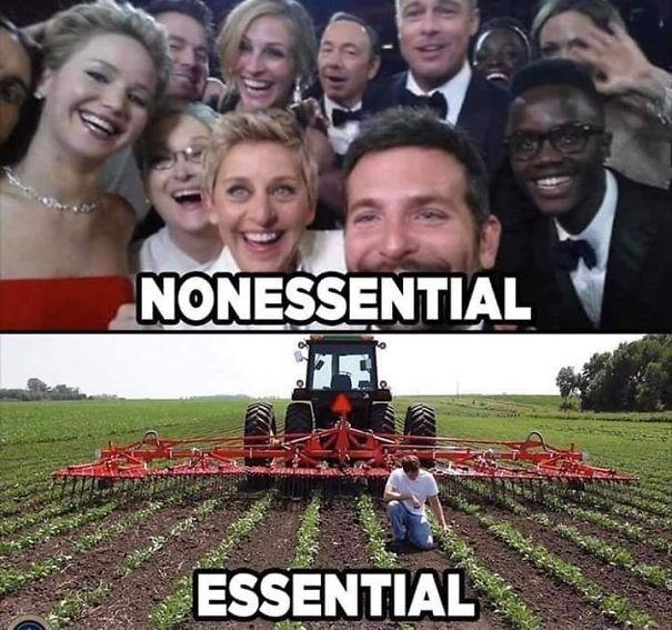 non-essential-celebs-5ea3b9753c17c.jpg