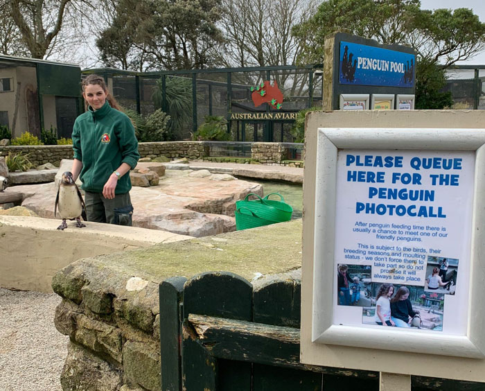 Zookeepers Self-Isolate In A UK Wildlife Park For 3 Months To Take Care Of Animals