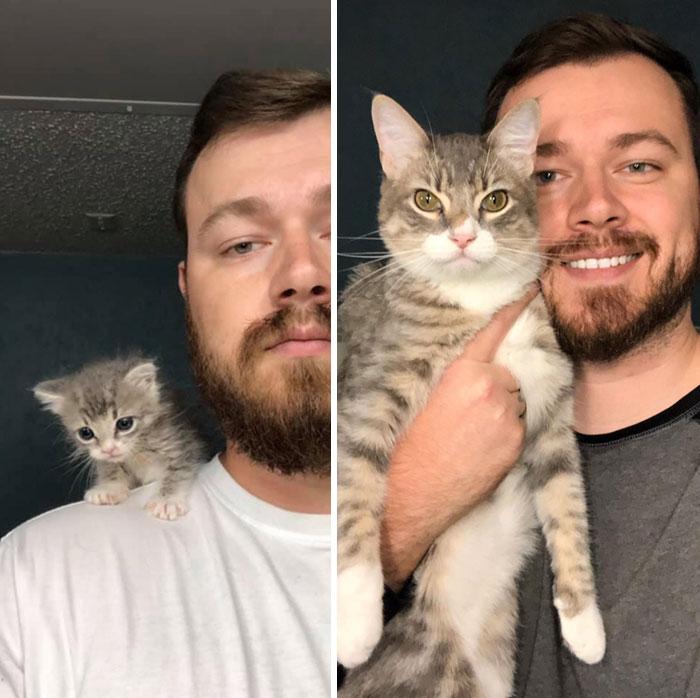 My Little Rescue Kitten Isn't So Little Anymore