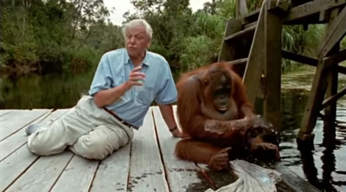 BBC Announces Its Online Geography Lessons Will Be Taught By Sir David Attenborough