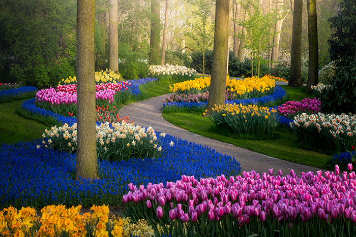 The Most Beautiful Flower Garden In The World Has No Visitors For The First Time In 71 Years And I Got To Capture It (31 Pics)