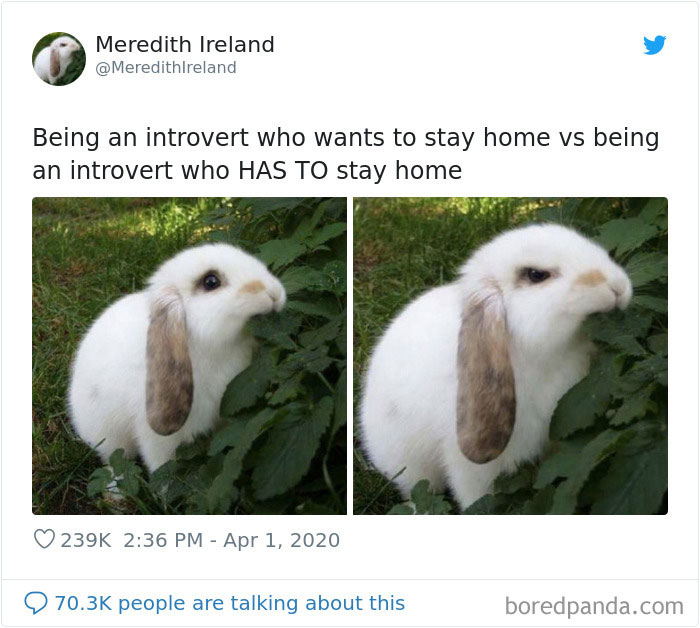 Funny-Women-Tweets-Jokes