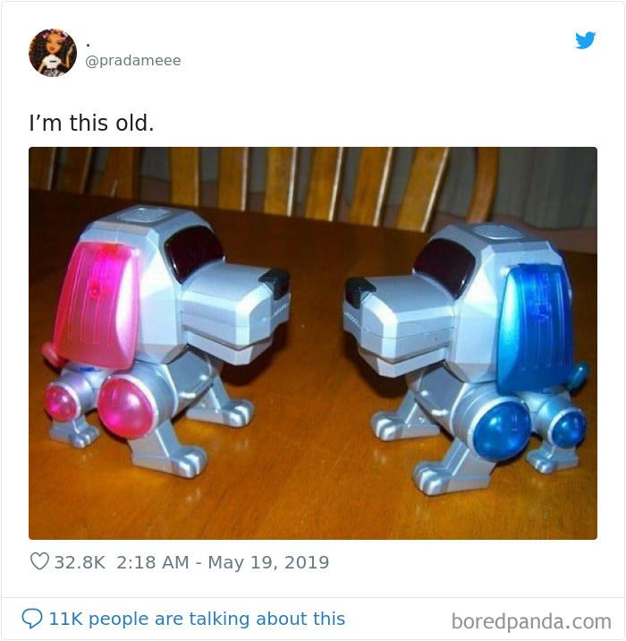 Robo Pets