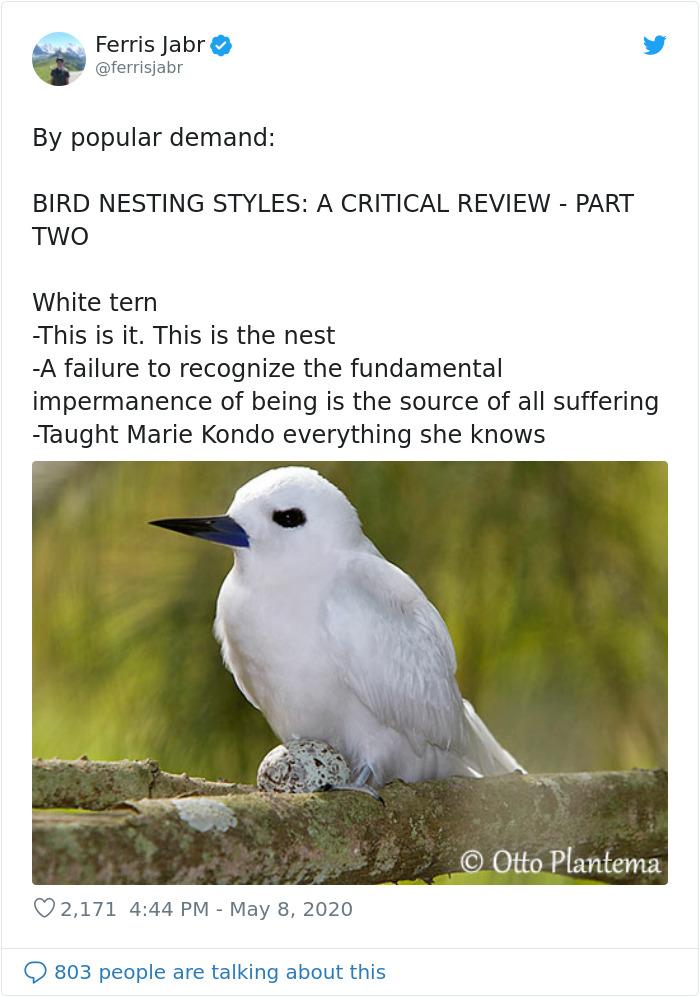 Bird-Nesting-Styles-Ferris-Jabr