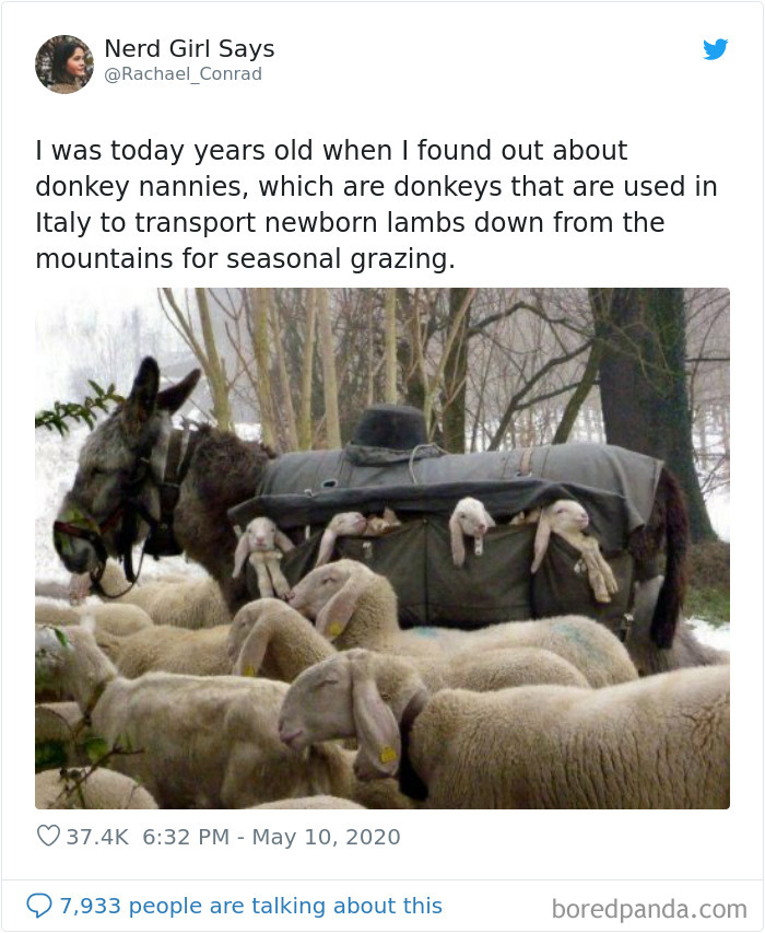 Today-Years-Old-People-Share-Facts